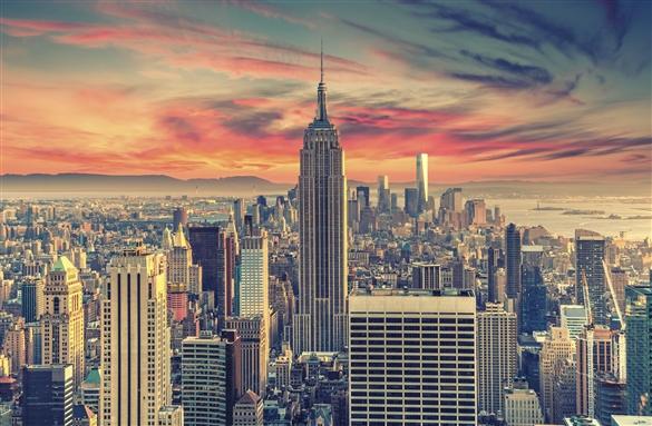new york NYSPINS